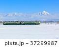 只見線 列車 冬の写真 37299987