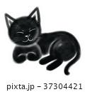 猫 黒猫 くつろぎのイラスト 37304421