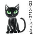 猫 黒猫 子猫のイラスト 37304422