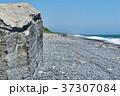 トーチカ トーチカ跡 海の写真 37307084