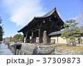 東寺 寺 寺院の写真 37309873