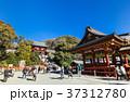 鎌倉 鶴岡八幡宮 本宮の写真 37312780