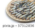 天然鮎 37312836