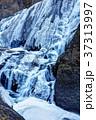 袋田の滝 四度の滝 冬の写真 37313997
