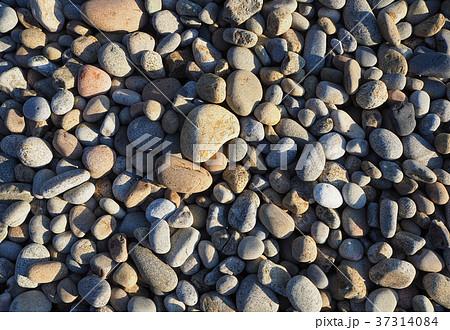浜辺の石 37314084