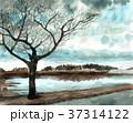 水彩で描いた冬木立の風景画 37314122