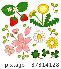春イラスト 37314128