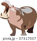 カバ 動物 ベクターのイラスト 37317037