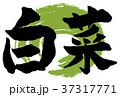 白菜筆文字 37317771