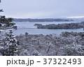 冬の松島 37322493
