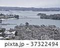 冬の松島 37322494