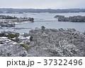 冬の松島 37322496