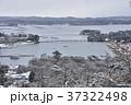 冬の松島 37322498