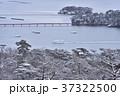 冬の松島 37322500