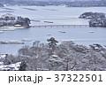 冬の松島 37322501