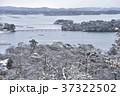 冬の松島 37322502