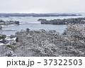 冬の松島 37322503