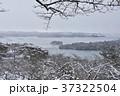 冬の松島 37322504