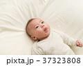 赤ちゃんと一緒 37323808