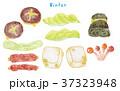 野菜 セット 食材のイラスト 37323948