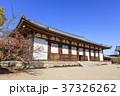 奈良県・法隆寺・大講堂 37326262