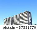 マンション アパート 住宅の写真 37331770