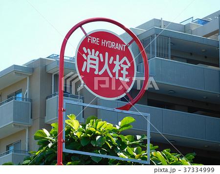 消火栓設備 37334999