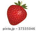 苺 37335046