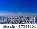都市風景 都心 ビル街の写真 37336101