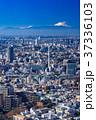 都市風景 都心 ビル街の写真 37336103