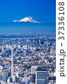都市風景 都心 ビル街の写真 37336108