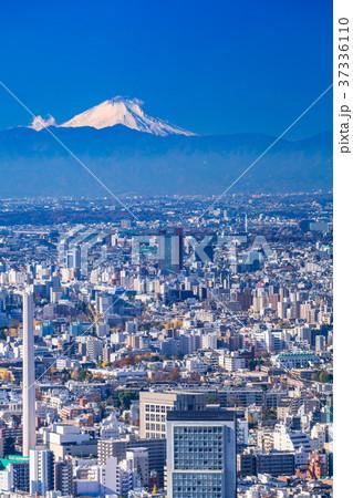 《東京都》東京の街並み・彼方に浮かぶ富士山 37336110
