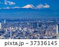 都市風景 都心 ビル街の写真 37336145