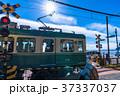《神奈川県》江ノ電・鎌倉高校前の踏み切り 37337037