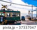 《神奈川県》江ノ電・鎌倉高校前の踏み切り 37337047