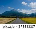 由布岳 田舎 一本道の写真 37338887