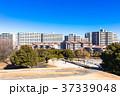 住宅街 住宅地 マンションの写真 37339048