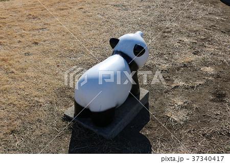 パンダのオブジェ 37340417