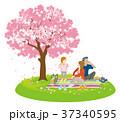 花見をする家族 春の野原 クリップアート 37340595