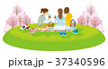花見をする3人の女性 春の野原 クリップアー 37340596