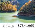 奥多摩湖 紅葉 秋の写真 37341965