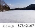 栃木県日光市 湯ノ湖 3月 37342107