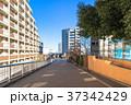 住宅街 マンション 集合住宅の写真 37342429