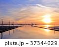 江川海岸の夕景 37344629