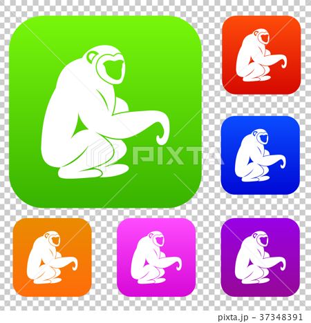 Monkey sitting set color collection 37348391
