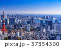 東京 東京タワー 都市風景の写真 37354300