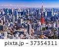東京 東京タワー 都市風景の写真 37354311