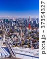 東京 東京タワー 都市風景の写真 37354327