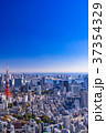 東京 東京タワー 都市風景の写真 37354329