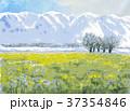 滋賀県の魅力 早春の比良山と菜の花畑 スケッチ 37354846